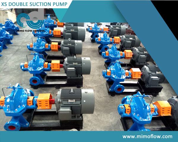 Good News! XS125-500 Double Scution Pumps are Finished and Exported to Philippines!