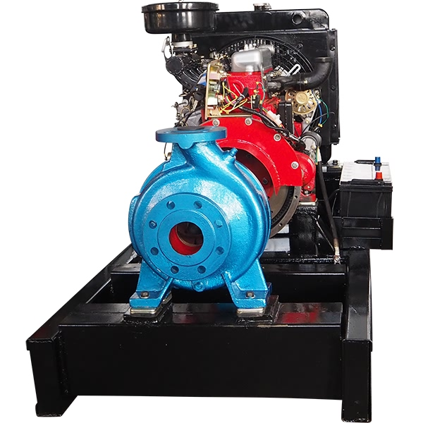 Factory Price Electric Mud And Slurry Pump -